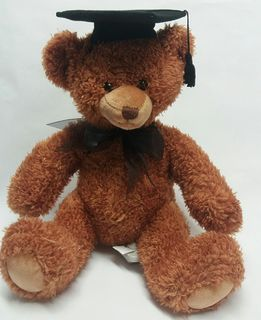Bear Graduation Soft Toy